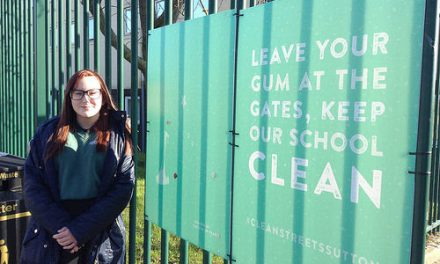 Greenshaw student's art installation helps Clean Street initiative