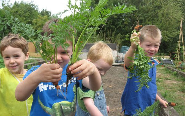 Fantastic fun at this free Beanstalk project session – book now