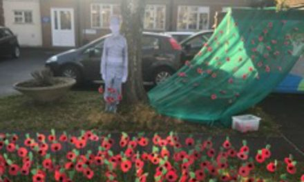 Hackbridge primary students create poppies for Remembrance Day