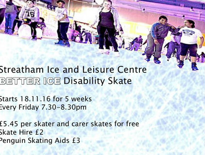"Special opportunity ""Better Ice"" for disability skating"