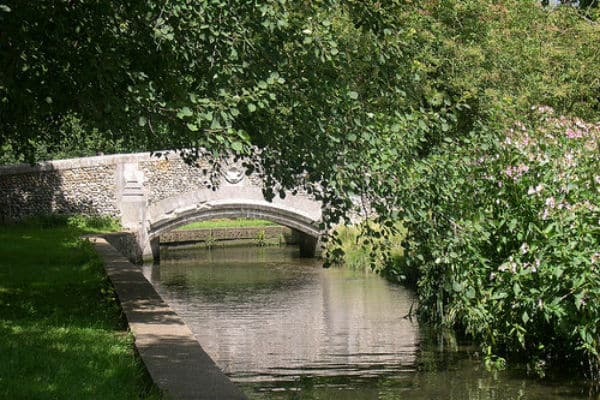Great events planned in Beddington Park – take a look