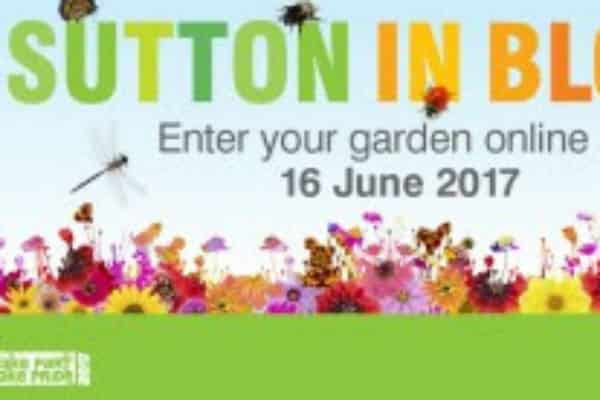 Hunt is on for borough's best blooms