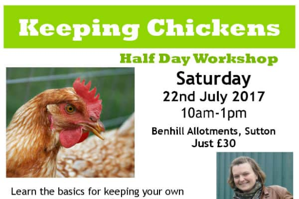 Want to know how to keep chickens then fly along to this one day course