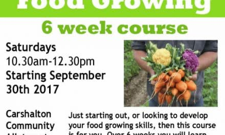 Fantastic food growing course at Carshalton's Community allotment