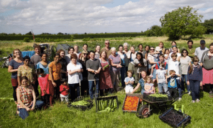 Make new friends, learn more skills – all by volunteering at Sutton Community Farm