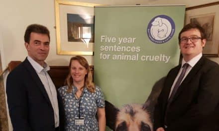 MP backs harsher sentencing for animal cruelty